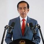 Maksud Jokowi baik, ajak cinta produk lokal