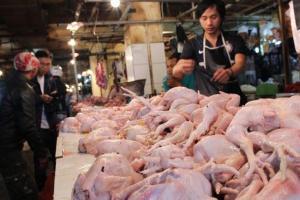 Harga Ayam di Cirebon Meroket, Per Kg Rp40.000