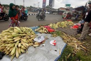 Jelang Malam Tahun Baru, Pedagang Jagung Pinggir Jalan Bermunculan