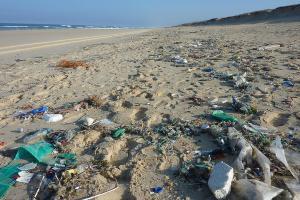 IPB Utamakan Teknologi untuk Cegah Pencemaran Laut