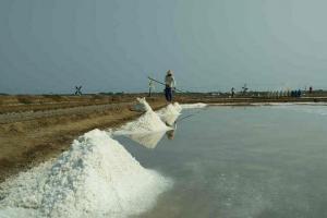 Garamnya Tak Laku, Petani Cirebon Minta Impor Garam Dibatasi