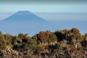 Status Waspada, PVMBG Imbau Jauhi Puncak Gunung Slamet