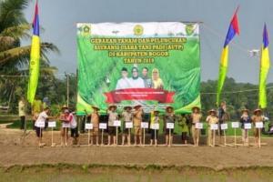Petani Kabupaten Bogor Kini Punya Asuransi Usaha Tani Padi
