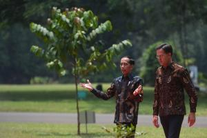 Jokowi Apresiasi Belanda yang Hormati Kedaulatan NKRI