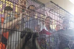 Penyelundup Satwa Ditangkap Polda Jabar