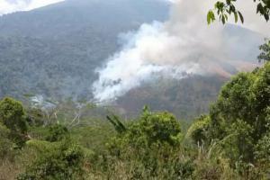 BPBD Kuningan Kirim Tim Padamkan Karhutla di Gunung Ciremai