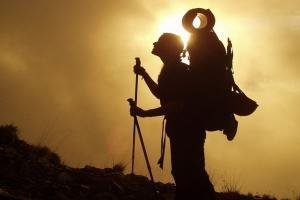 Jalur Pendakian Gunung Gede Pangrango Ditutup