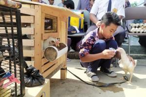 Siswa Rawat Anak Ayam, Wali Kota Bandung: Mereka Agak Lupa Pada 'Gadjet'