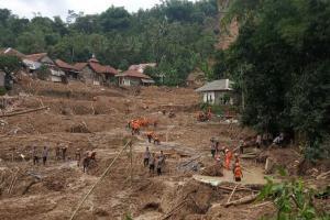 Ribuan Bibit Akar Wangi Akan Ditanam di Kecamatan Sukajaya Bogor