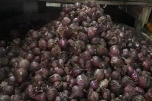 Konsumsi Meningkat, Harga Bawang di Cianjur Naik