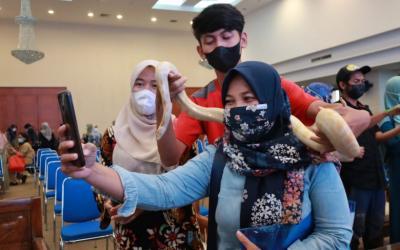 Marak Ular Masuk Rumah Warga, Pemkot Depok Latih Relawan Tangani Ular