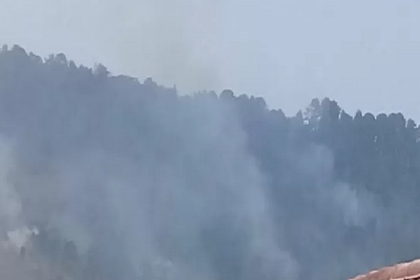 Hutan Gunung Walat Sukabumi Kebakaran